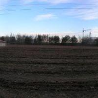 Опытное поле, Пинск