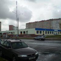 1184, Пинск