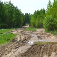 Dirty Road Near Miensk, Пинск