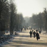 Улица Притыцкого. Street Pritytskogo., Молодечно