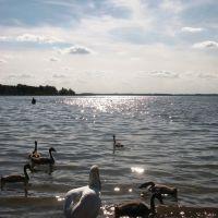 озеро Мястро, Мядель
