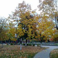 осенний парк, Солигорск