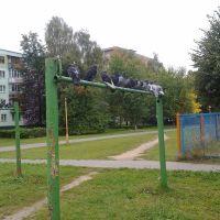 Голубинный сходняк, Солигорск