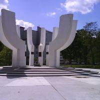 Памятник основанию города, Солигорск