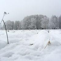лодочная станция, Солигорск