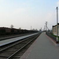 Железнодорожная станция Старые Дороги, Старые Дороги