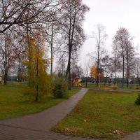 park, Старые Дороги