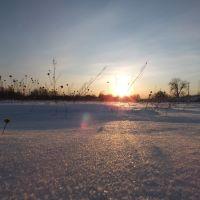 Winter, Столбцы