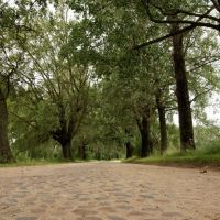 Мощеная дорога, Столбцы