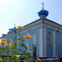 Царква Сьвятой Ганны XIX ст., Столбцы