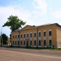 музыкальная школа, Узда