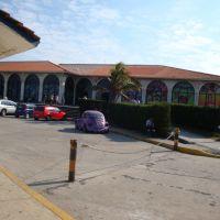 Acuario de Veracruz, Алтотонга