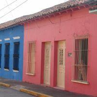 Casas en calle Ocampo, Альварадо