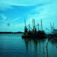 Alvarado, puerto, pesqueros, Альварадо