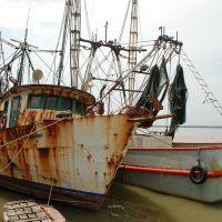 Alvarado veracruz-Barcos camaroneros., Альварадо