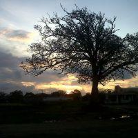 Un Crepúsculo, Косамалоапан (де Карпио)