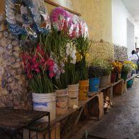 El Mercado y las Flores, Мартинес-де-ла-Торре