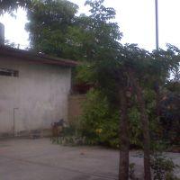 casa de  la familia (jaramillo, rivera), Пануко