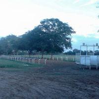 """Pista de Carrera de Caballos Rancho """"El Doce"""", Pánuco, Ver. Mex., Пануко"""