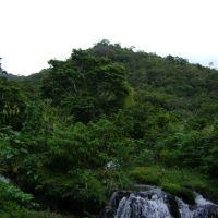 San Andres Tuxtla Veracruz, Сан-Андрес-Тукстла