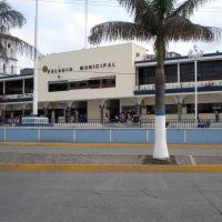 Palacio Municipal, Тукспан-де-Родригес-Кано