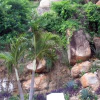 Mexico-Acapulco, Акапулько