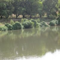 huerta de mangos  en  clalamulco  atenango del rio, Текпан-де-Галина