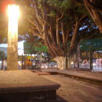 Luminaria., Акамбаро