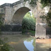 Espejo.Puente de Piedra(Acambaro Gto.), Акамбаро