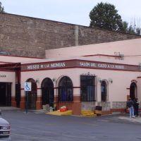 Museo de las momias, Валле-де-Сантъяго