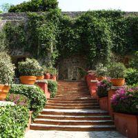 Flower lined stairs in the garden of museo de San Gabriel De Barrera, Гуанахуато