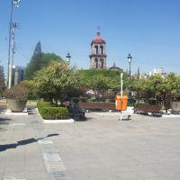 Irapuato centro, Ирапуато