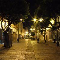 5 de Mayo Zona Peatonal Nocturna, Леон (де лос Альдамас)