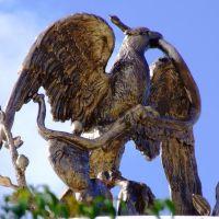 Águila Devorando Serpiente en La Plaza del Músico, Леон (де лос Альдамас)