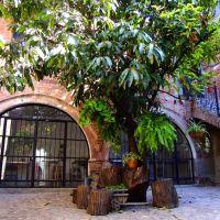 El último rincón de la Plaza Azul, Леон (де лос Альдамас)