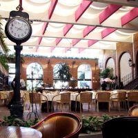 Buffet Mexicano en el Hotel Nueva Estancia, Леон (де лос Альдамас)