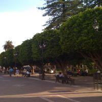 jardin principal de Pénjamo, Пенхамо