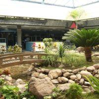 jardin botanico, Селая