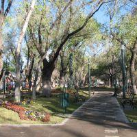 Las moreras, un gran paseo peatonal en el centro de Durango, Дуранго