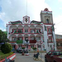 Palacio municipal de Zacualtipan, Гуэхутла-де-Рейес