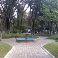 parque pasteur fuente, Пачука (де Сото)
