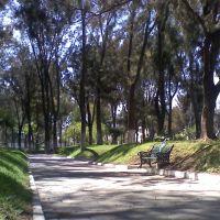 parque pasteur pachuca hidalgo, mexico, Пачука (де Сото)