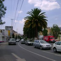 Madera Ave WEST / Avenida Madero OESTE, Пачука (де Сото)
