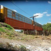 Puente ferroviario sobre Rio Sabinas construido en 1897 por American Bridge Co. de New York, Салтилло