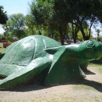 monumento a la tortuga en plaza de la tortuga torreon jardin, Торреон
