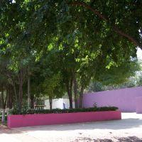 Plaza de los corredores, Торреон