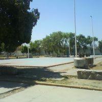 PVC - Canchas, Торреон