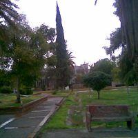 Plaza de la Tortuga, Торреон