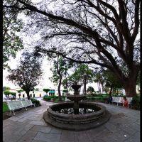 Jardínes // Centro de Colima, Колима