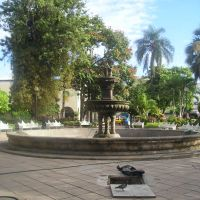 Jardin detras de la catedral, Колима
